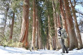 お散歩しながらパワーをチャージ~戸隠神社周辺散歩~