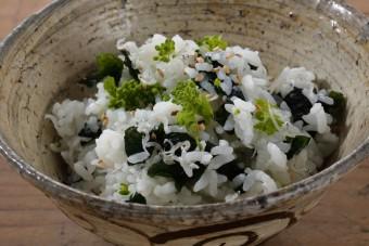 お腹に優しいヘルシー365レシピ「干しわかめ・ちりめん雑魚・菜の花蕾」の出来上がり写真