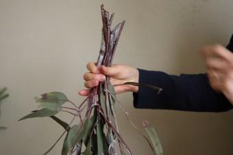 スワッグの作り方(1)根本の葉を落とす
