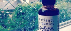「antianti organics」のオーガニックの力で湿気や紫外線から守るヘアケアコスメ