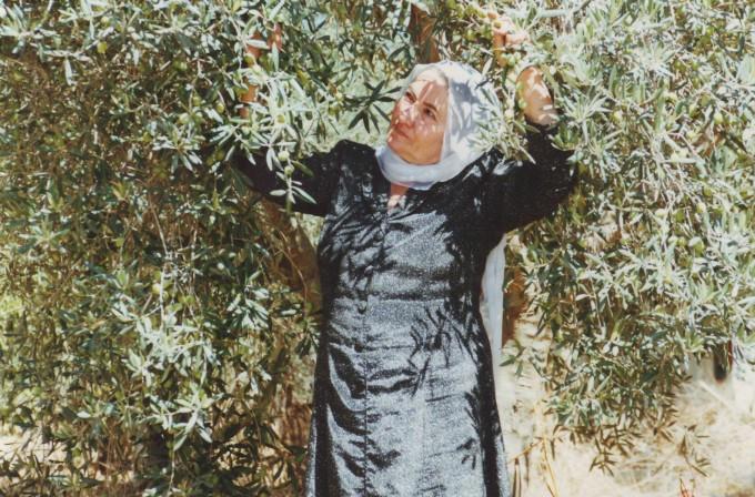 「ガミラシークレット」イスラエルのガミラお婆さん