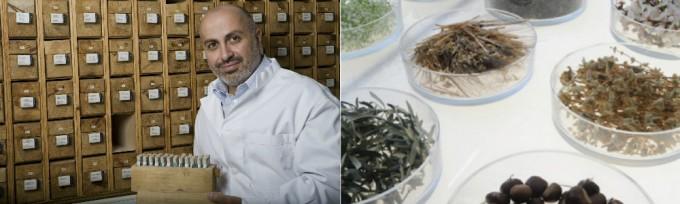 植物の力を最大限活用したナチュラルスキンケアブランド「Korres Natural Products」