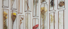 ガラスとグリーンが織りなす美しさ。滋賀にオープンした「hacomidori(ハコミドリ)」の観葉植物