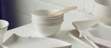 手元から伝わるおもてなし。大切なひと時をブラッシュアップする「WASARA」の紙皿