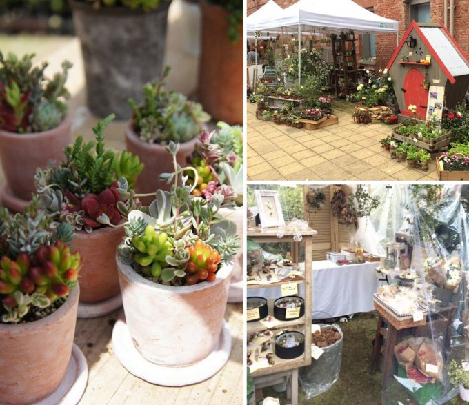 「Go Green Market」の多肉植物たち