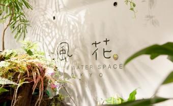 表参道にある都会のオアシス。緑に囲まれた「flower&cafe 風花」でエナジーチャージを