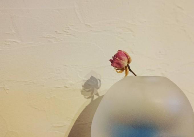 丸いうつわと花