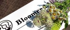 お花定期便、デリバリー、Bloomee LIFE(ブルーミー ライフ)