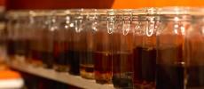 アンチエイジングや美肌に。体に優しく飲み方も自由に楽しめる、女性に人気の「浅草薬酒バー」へ