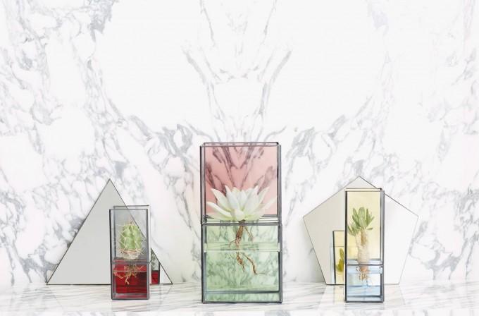 10¹² TERRA(テラ)のガラス製のバイカラ―の水栽培用テラリウム3種類