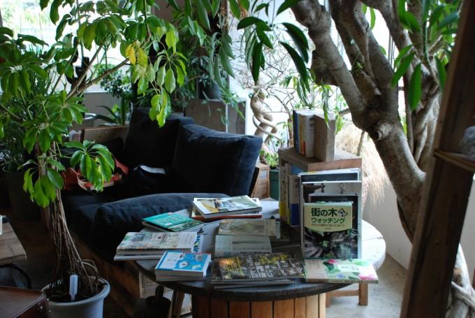 ネイビーのソファと本と丸いテーブルと大きな観葉植物の写真