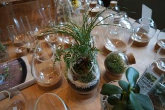 ボトルや電球の中に広がる癒しの世界。『植物+ガラスのインテリア』