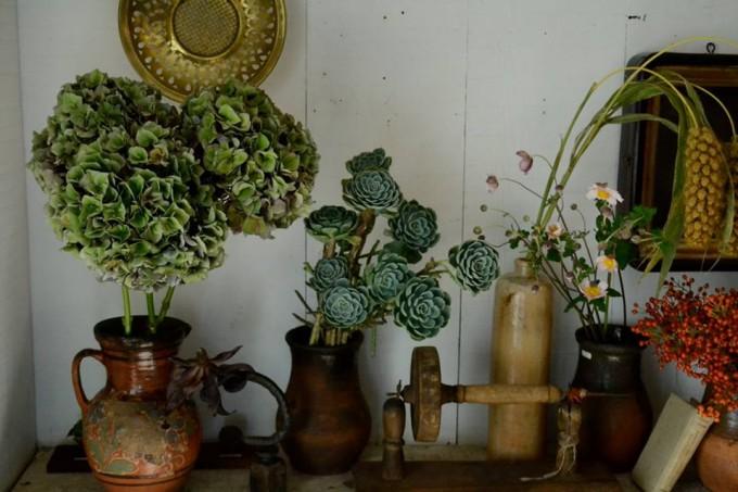 植物や古物が並ぶ様子