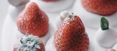 聖なる夜の主役に。パーティーをとびきり煌びやかに彩る「Pâtisserie Asako Iwayanagi」のクリスマスケーキ