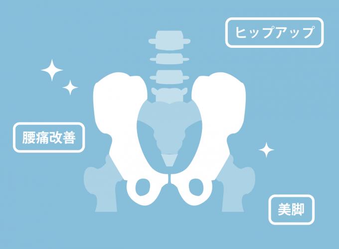 骨盤のレントゲン写真のようなイメージ図