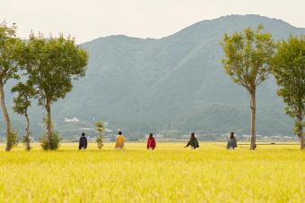 新潟県五泉市発。これからの装いが軽やかに華やぐポンチョブランド「mino」