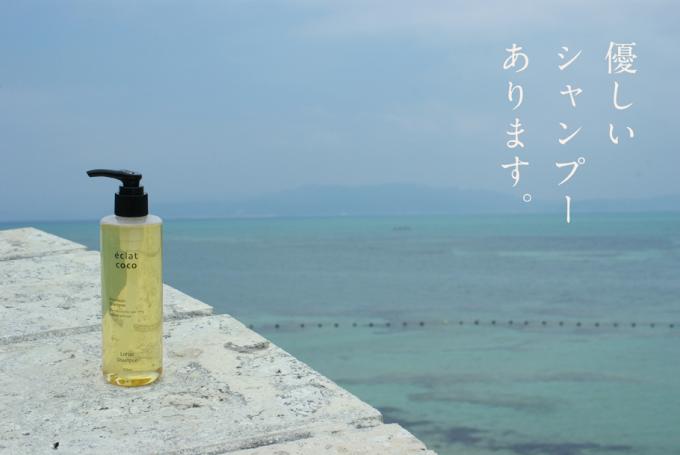 海をバックにした石の上に置かれたéclat coco(エクラココ)の優しいシャンプーの写真