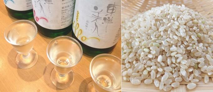 透明なグラスに入った日本酒の東洋美人と玄米の写真
