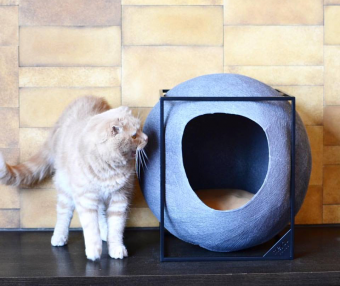 愛猫との健やかな暮らしを。「DecoraMeow」のおしゃれで機能的なネコ用グッズ