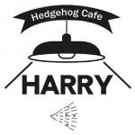 HARRY(ハリー)のロゴ