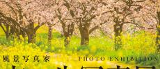 九州の桜と春が展示される「玄一生写真展」