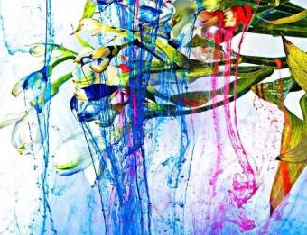 """""""押し花""""をモチーフにさまざまな表現に挑む。相壁琢人Pressed Flower Exhibition『無彩色の痛点』"""