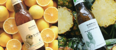 「サンクトガーレン」の春夏限定フルーツビール2種類がそれぞれの原料の上に置かれている