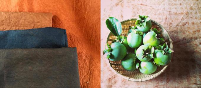 ユルクルで使う柿渋は青柿を絞った天然染料