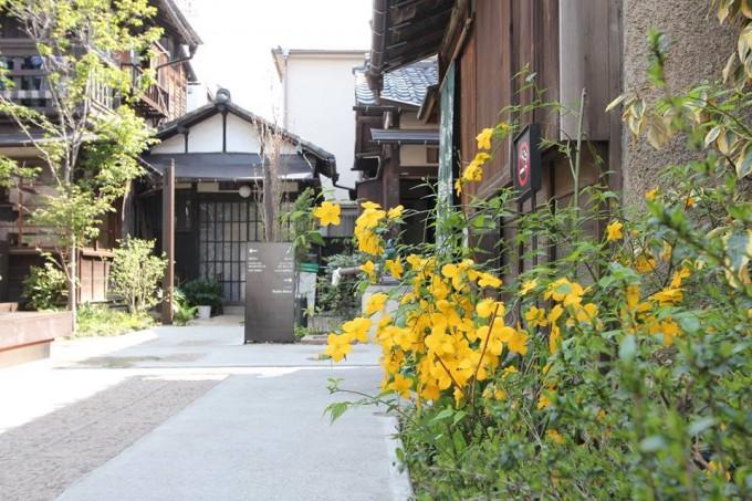 外から観た「上野桜木あたり」の三軒屋の様子