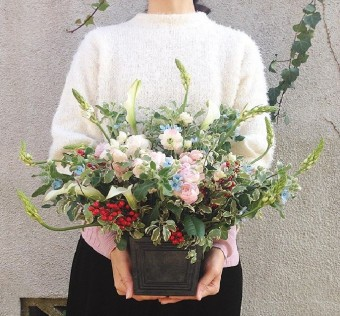 新生活にお花でお部屋を模様替え!  移動式植物園「桜山植物園」