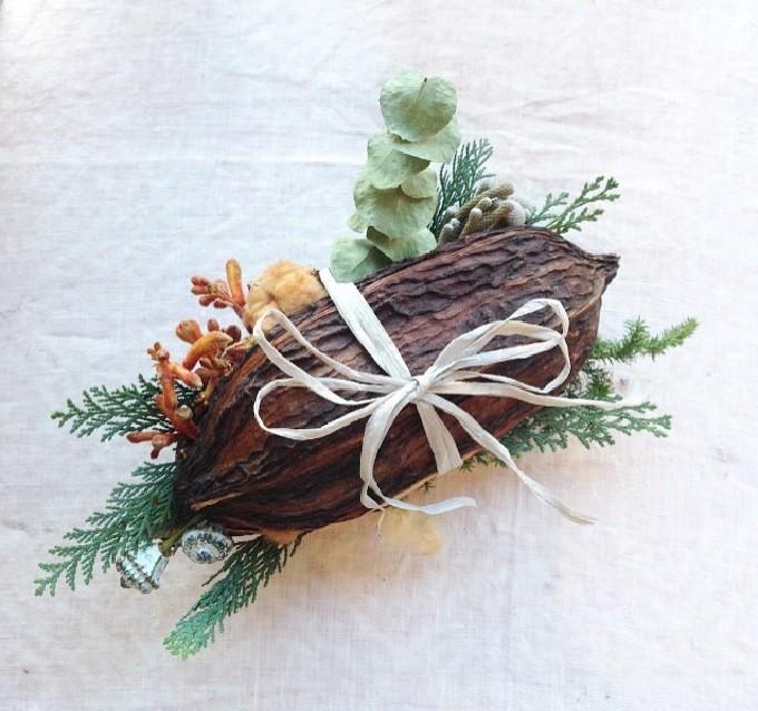 「桜山植物園」のカカオの種の玉手箱