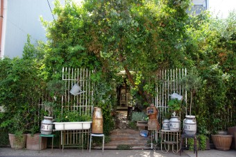 花と緑のある暮らし。名古屋のフラワーショップ「PEU・CONNU(プー・コニュ)」