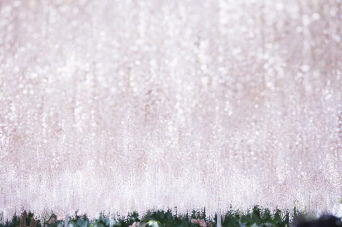 原美術館に展示される蜷川実花が撮った桜の写真