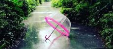雨の中の「FULTON(フルトン)」おしゃれ傘