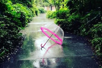 雨の日のコーディネートにプラスしたい「FULTON」のおしゃれな傘8選