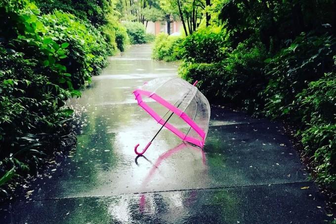 雨の降る道にあるFULTON(フルトン)の傘ピンク