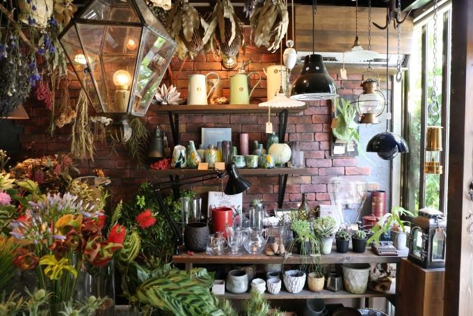 「anima garage(アニマ ガレージ)」の雑貨や植物たち