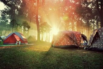 ポーラ美術館の森の中でキャンプをしながらアートを体感。「FOREST MUSEUM 2017」