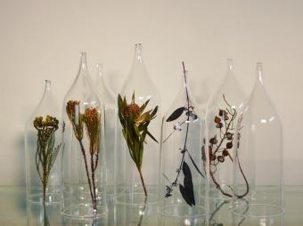 植物を透明の中に閉じ込めて。蠣﨑マコトさんが生み出す幻想的なガラスの世界