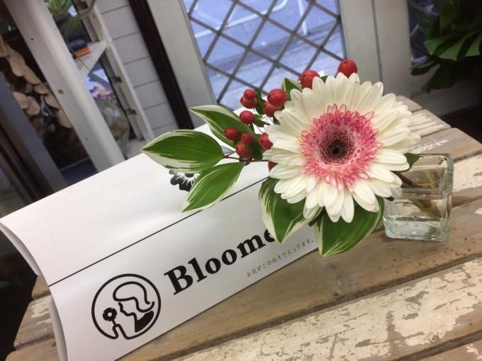 旬のお花が届くお花の定期便「Bloomee LIFE」