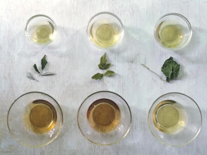 ガラスのコップに入った「table」のお茶6種類