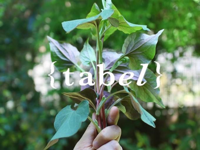 「table」のロゴと薬草を持った手