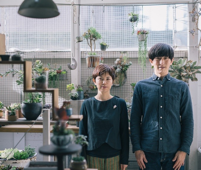 多肉植物ユニットTOKIIRO(ときいろ)