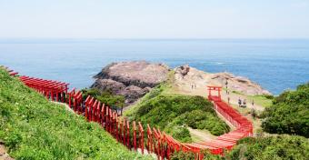 海辺に連なる123基の赤い鳥居が美しい。パワースポットとしても有名な「元乃隅稲成神社」