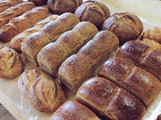 「Pampshade」の廃棄のパン、インテリアライトになる前のパンの姿が分かる画像