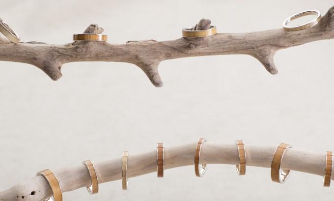 年輪、12ヶ月の「誕生木」の指輪
