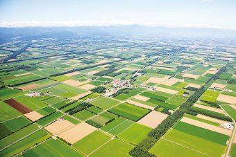 """北海道での心豊かな暮らしを体験できて、ほんとうに良いものに出会える""""スロウ村の仲間たち"""""""