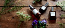 オゥパラディのオイルシリーズと花