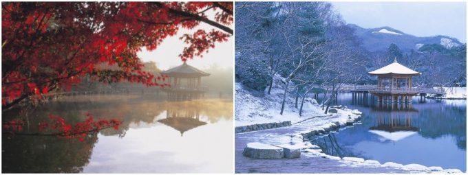 奈良の穴場スポット「浮見堂」秋・冬