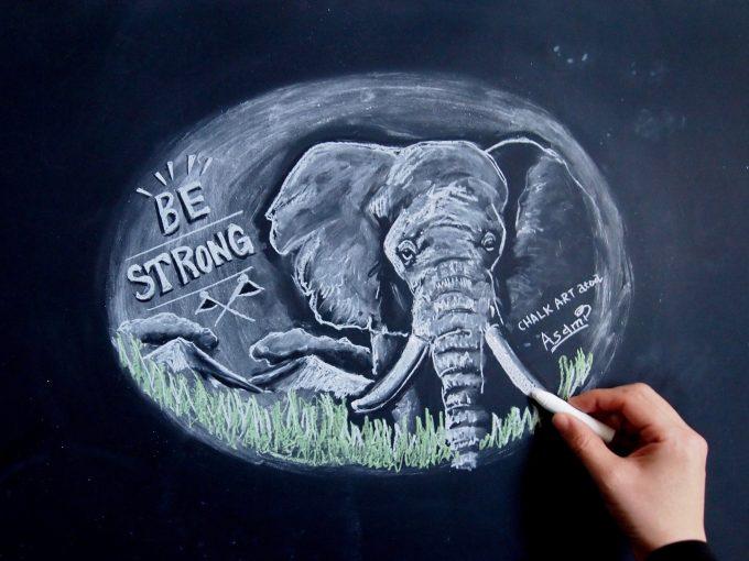 チョークアートで書かれた象